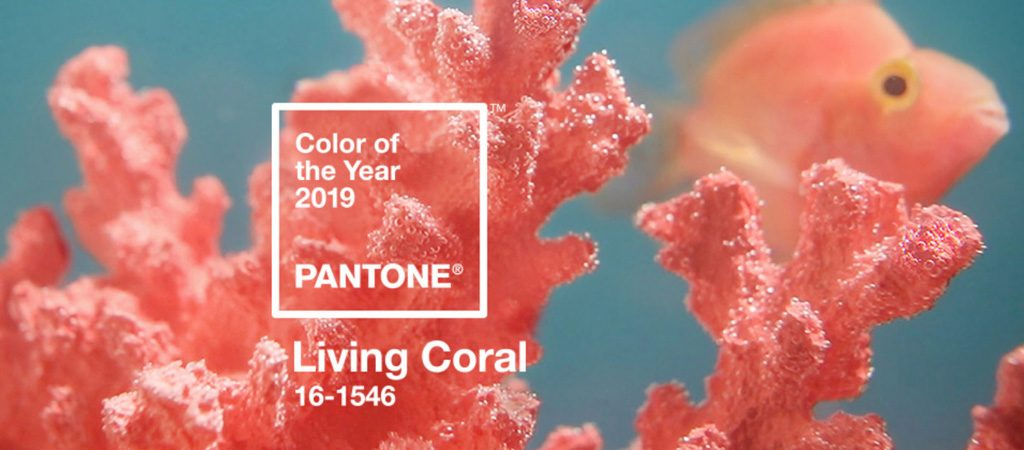 Pantone's Colour of the Year 2019 – Living Coral